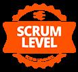 Scrum Level Essentials