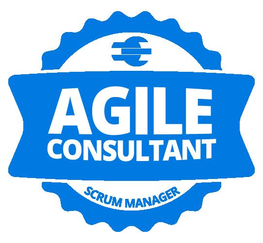 Agile consultant